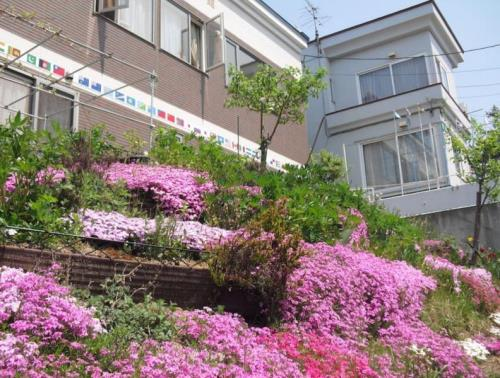 HY 1 Bedroom Apartment in Sapporo 14